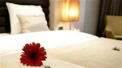 Rys Hotel Edirne, ---